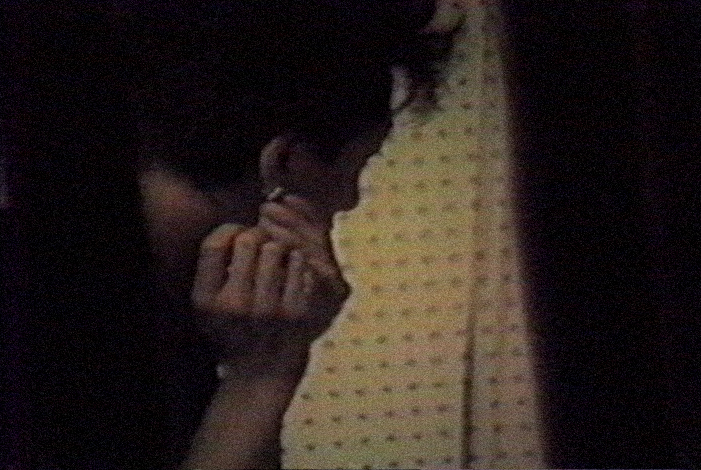[ Fig. 06 ] <i>Say Cheese for a Trans-Canadian Look</i> (video still), 1985.
